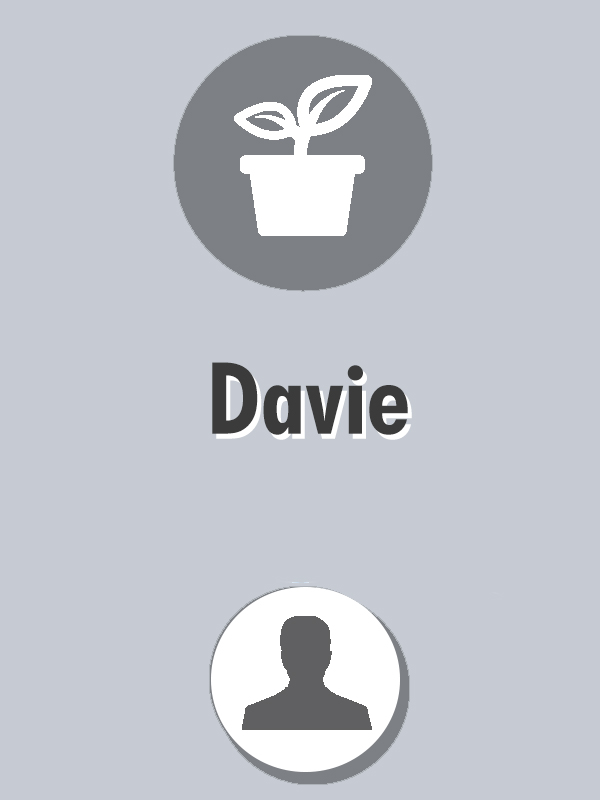 davie-directorio