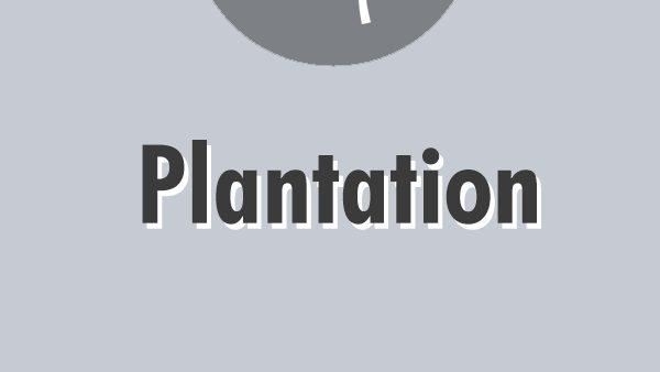 plantation-directory